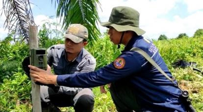 Warga Dumai Tewas Diterkam Harimau, BBKSDA Riau akan Panggil Perusahaan di Sekitar Lokasi Kejadian
