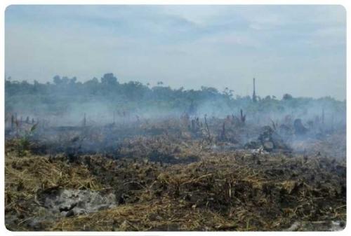 Titik Panas Meroket, Helikopter BNPB Dikerahkan untuk Bom Air ke Bengkalis, Dumai Masih Diselimuti Kabut Asap