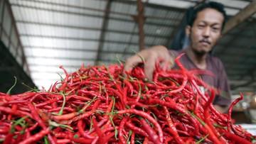 Riau Inflasi 0,27 Persen, Pemicunya Kenaikan Harga Cabai Merah hingga Biaya Sewa Rumah
