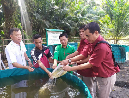 Program CSR Asian Agri Dukung Pemuda untuk Mandiri