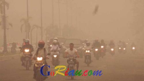 60 Juta Orang Terpapar Asap, Berikut Dampak Mengerikan Karhutla yang Melanda Indonesia Sepanjang 2015