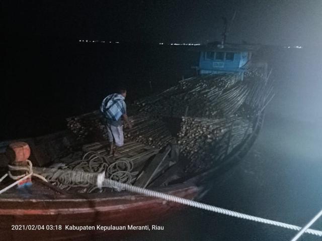 Kapal Pengangkut Ribuan Kayu Teki Ilegal di Perairan Kepulauan Meranti Diamankan Bea Cukai