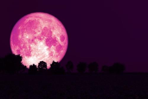 Saksikan Gerhana Bulan Strawberry Dini Hari Nanti, Berlangsung 3 Jam 18 Menit