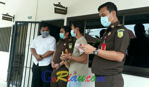 Perdagangan Gading Gajah di Pelalawan Riau Dibongkar, Kasusnya Dilimpahkan ke Kejaksaan