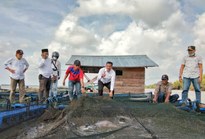 Kunker ke Rangsang Barat, Bupati Adil Tinjau Budidaya Kakap Putih dan Infrastruktur Jalan