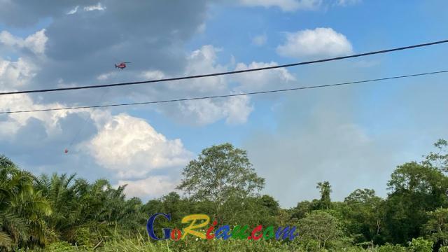 BPBD Riau Kerahkan Helikopter Water Bombing Padamkan Kebakaran Lahan di Teratak Buluh