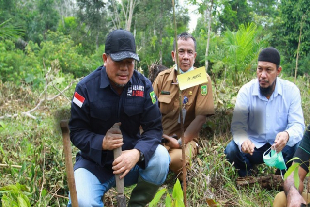 Program Adopsi Pohon Dapat Tingkatkan Index Kualitas Lingkungan Hidup di Riau, 14.000 Pohon Sudah Diadopsi