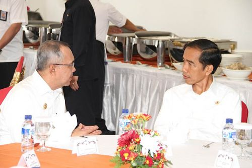Presiden Jokowi Beri Solusi Karhutla di Riau