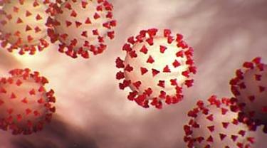 WHO Sebut Virus Corona Menyebar di Udara dalam Ruangan Tertutup