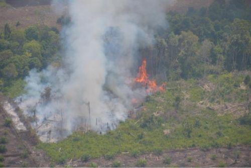 Gawat, Luas Lahan Terbakar di Bengkalis Sudah Mencapai 5.349 Hektar