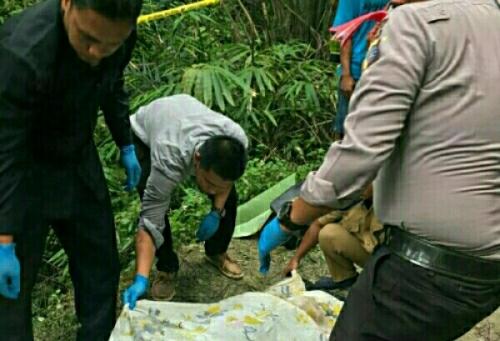 Pelaku Curas di Pelalawan Ditangkap, Bunuh Korban dan Rampas Hartanya
