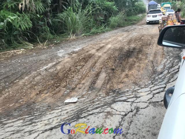Jalan di Indragiri Hulu Rusak Parah, DPRD Harap Peran Perusahaan, Bayu: Pajak yang Diberikan tak Sebanding dengan Kerusakan