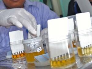 Untuk Tes Urine Anggotanya, Kasatpol PP Riau Tunggu APBD Perubahan