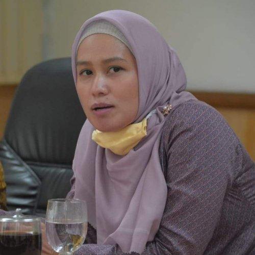 Sebelum Jalan Tol Diresmikan Presiden Jokowi, Karmila Minta BRK Jalin Kerjasama Kelola E-Toll