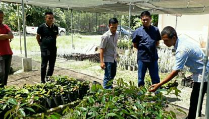 Tinjau Balai Benih Hortikultura Pelalawan, Wakil Ketua DPRD Syafrizal Ingin Buah Lokal Jadi Juara