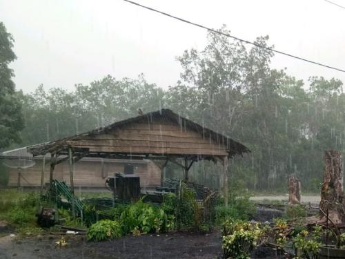 Hotspot Sore Ini Meningkat di Pulau Sumatera Dibandingkan Pagi, Teknologi Modifikasi Cuaca Diperluas Hingga Jambi