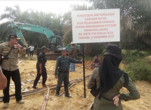Penggiat Lingkungan Apresiasi Langkah Kejari Pelalawan Eksekusi Pidana Pokok Senilai Rp 5 Miliar pada PT PSJ