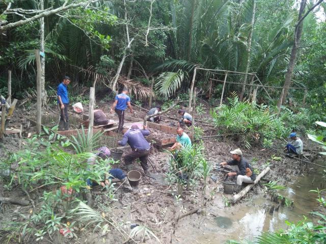 Program Padat Karya Mangrove KLHK di Riau Serap 1.552 Orang Tenaga Kerja