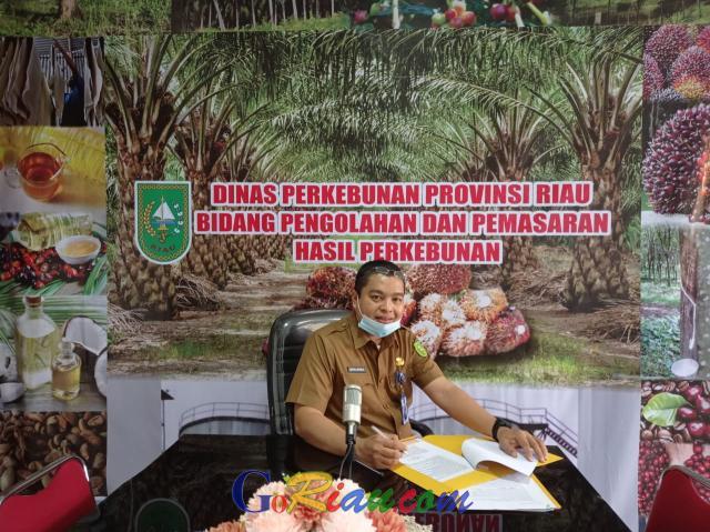 TBS Kelapa Sawit di Riau Pekan Ini Harganya Rp2.109,98 per Kg