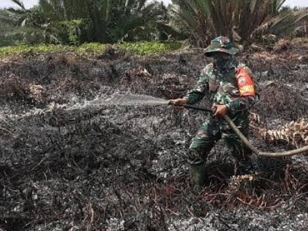 10 Hektar Lahan PT Pulau Sambu di Riau Terbakar, Dandim 0314 Inhil: Api Sudah Padam