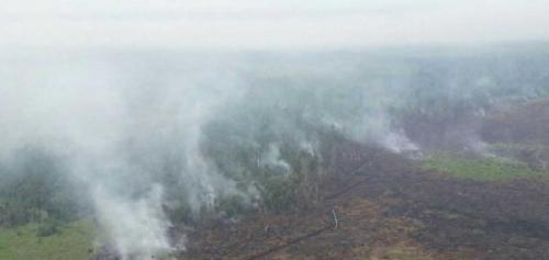 4 Hekilopter dan Pesawat Bom Air Dikerahkan ke Rohil untuk Padamkan Api