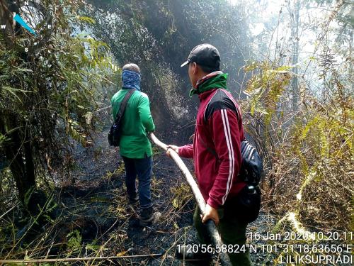 Selama Awal Tahun 2020, 2,45 Hektar Lahan di Pekanbaru Terbakar