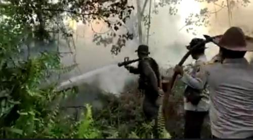 Awal Tahun Sudah Belasan Hektar Lahan Terbakar di Siak, Polres Tangkap 1 Orang Diduga Pelakunya