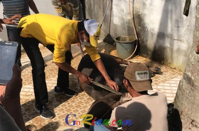 Peringati Idul Adha, IKB SMPN 5 Pekanbaru Kembali Sembelih Hewan Qurban di Panti Asuhan
