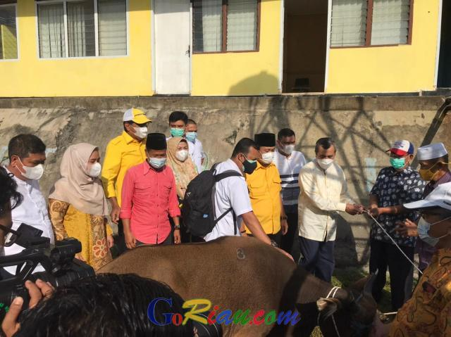Peringati Idul Adha, Golkar Riau Sembelih Empat Ekor Sapi
