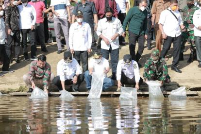 Gubri dan Wagubri Tebar 6.000 Ekor Benih Ikan Patin di Sungai Desa Cipang Kiri Hulu