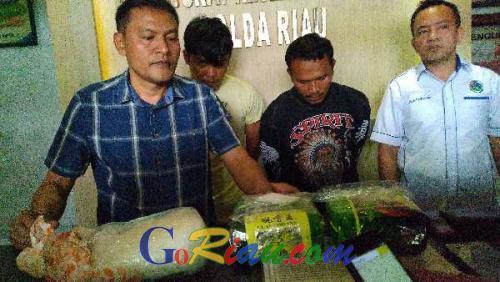 Ditnarkoba Polda Riau Tangkap Dua Orang Pengirim 3 Kg Sabu Asal Malaysia