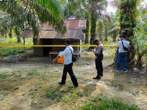 Mayat Pria Bertato Ditemukan Membusuk dalam Gubuk di Mahato Rohul