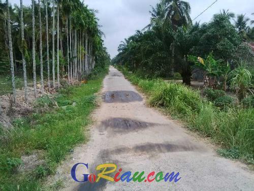 Sudah Cemari Lingkungan Masyarakat dengan Limbah B3, PT Naga Mas Palm Oil Lestari Tak Pernah Salurkan CSR