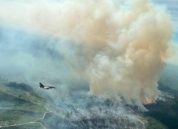 Lagi Latihan Terbang, Pesawat Tempur F-16 TNI AU Temukan Kobaran Api Karhutla di Kampar Riau