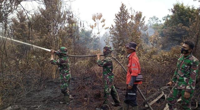 Kolaborasi Perusahaan, TNI/Polri, Pemerintah dan Masyarakat, Karhutla di Tasik Serai Bisa Dipadamkan