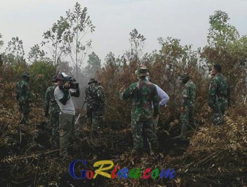 1.369,27 Hektare Lahan dan Hutan di Riau Ludes Terbakar Sepanjang 2017