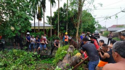 Banyak Pohon Tumbang Akibat Angin Kencang, Wabup dan Kapolres Meranti Turun ke Lapangan Bantu Evakuasi
