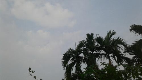 Pagi Ini Kabut Asap Agak Menipis di Pekanbaru, Terlihat Awan di Langit