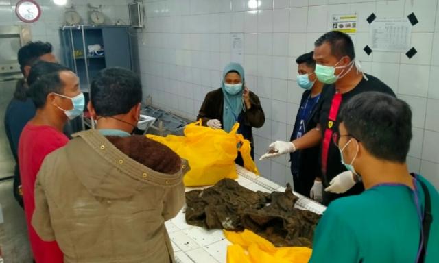 Terungkap Identitas Mayat di Kebun Kelapa Jalintim KM 55 Pelalawan, Ini Hasil Otopsinya