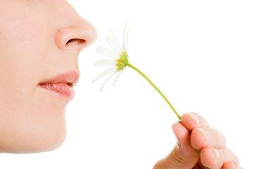 Kehilangan Penciuman dan Perasa Pertanda Baik bagi Orang Terpapar Virus Corona, Ini Penjelasannya