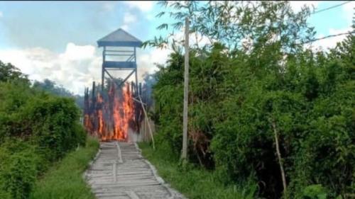 Polisi Bakar Kampung Narkoba Ala Kolombia di Kalteng, Tangkap 5 Mata-mata, Bandarnya Kabur