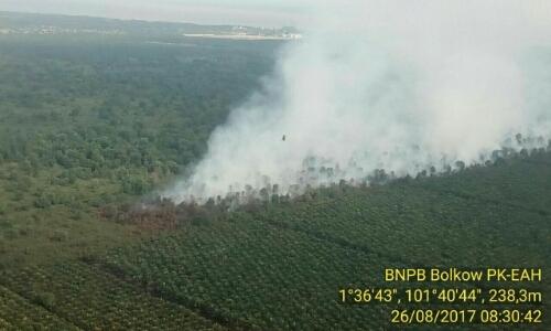 Pagi Ini, Satgas Udara Temukan Titik Api di Dumai