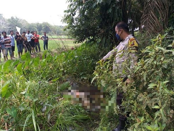 Pergi Mancing, Pria di Kampar Temukan Mayat Wanita Sudah Membusuk di Parit