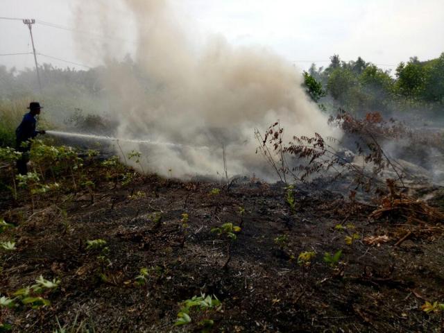 Masuki Musim Hujan, Riau Cabut Status Siaga Darurat Karhutla