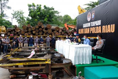 Polda Riau Amankan Puluhan Ribu Kubik Kayu dan Alat Sawmill dari Kawasan Rimbang Baling
