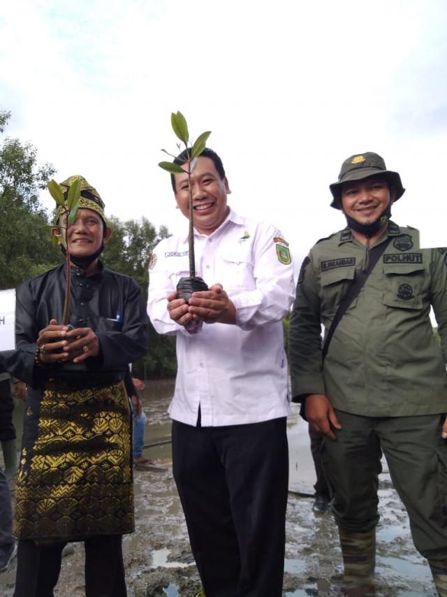 BPDASHL Indragiri Rokan KLHK Lakukan Program Padat Karya Mangrove di Inhil