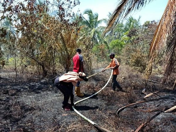 Karhutla di Pulau Topang Rangsang, Satu Unit Rumah Juga Ikut Terbakar