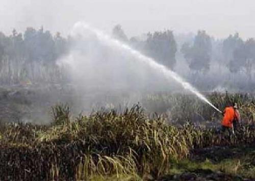 Sejak Awal 2018, Kebakaran Hutan dan Lahan di Riau 5.776 Hektare