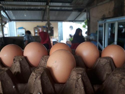 Wah.., Harga Telor di Kuansing Capai Rp50 Ribu per Papan