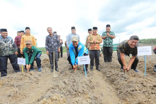 Tanam Ubi Casesa, 20 Mustahik di Gasib Diberikan Pinjaman Lahan Seluas 20 Hektar